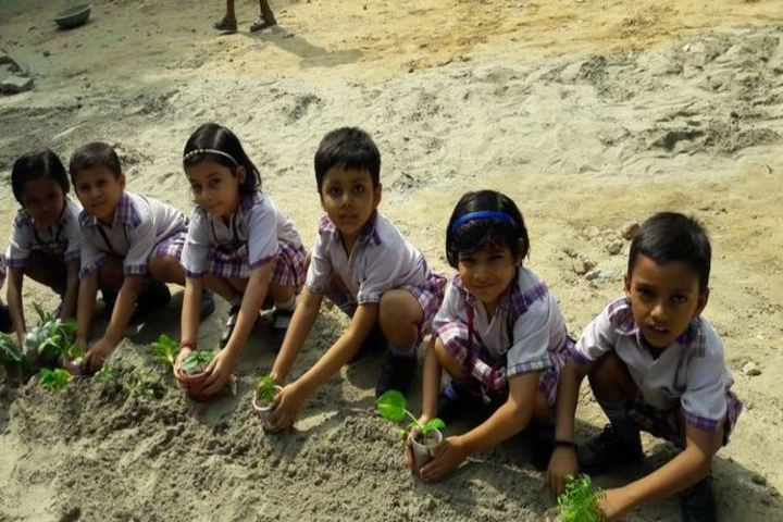 Chhaya Public School-Tree Plantation