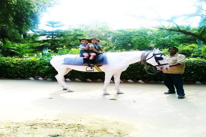 Children Academy-Horse Riding