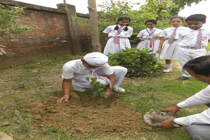 Christ Jyoti Convent School-Tree Plantation