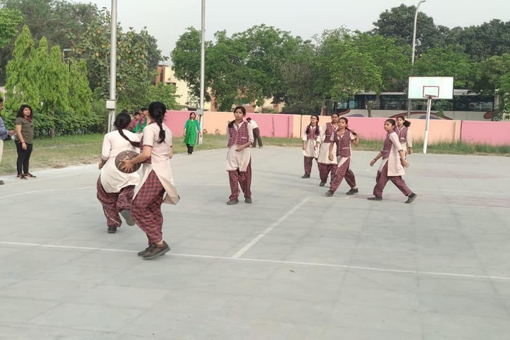 Dav Public School-Basketball
