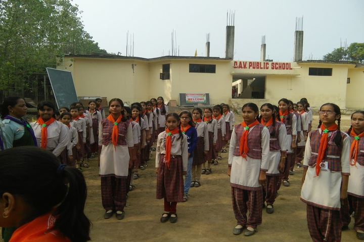 DAV Public School-Scouts and Guides