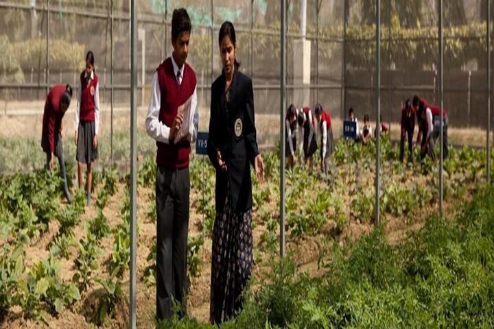 Dayawati Modi Academy-Field Visit