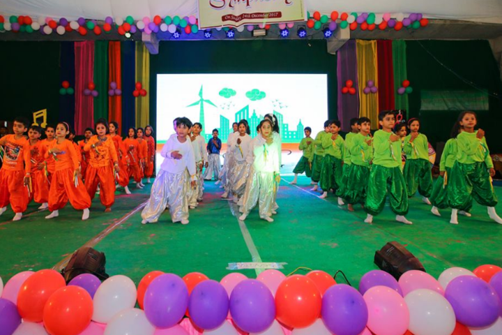 delhi public school shikohabad-National day celebration
