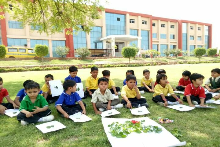 Delhi Public School-Activity