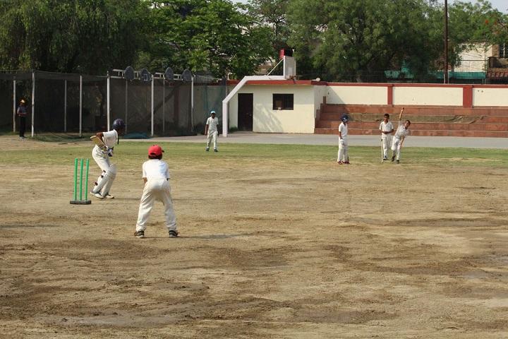 Dlf Public School-Sports cricket