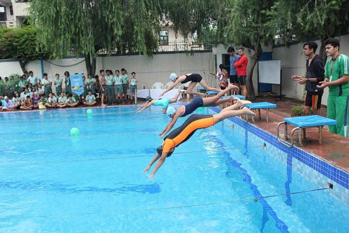 Dlf Public School-Swimming Pool