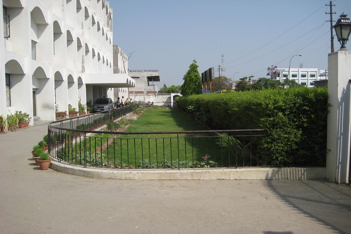 Dr Virendra Swaroop Education Centre-School Lawn