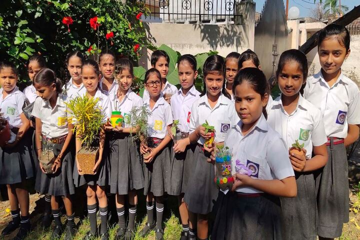 Dr Virendra Swarup Education Centre-Planting Tree