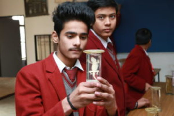 Ghaziabad Public School-Biology Lab