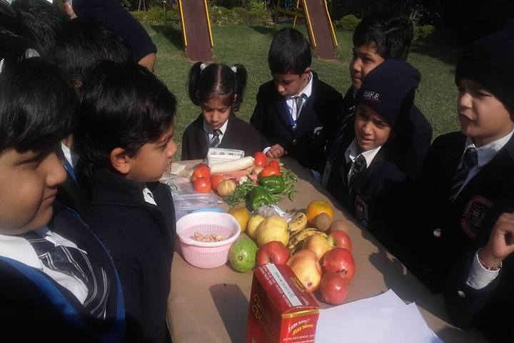 Grain Chamber Public School-Fruits