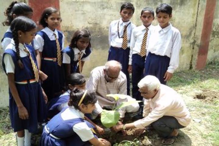 Gramya Bharati Purv Madhyamik Shikshalaya-Tree Plantation