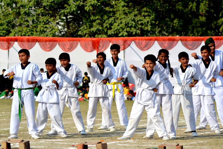 Green Land Public School-Karate