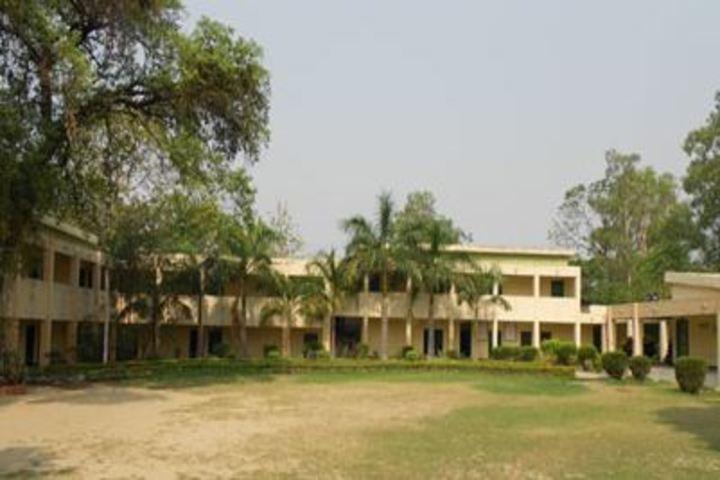 H A L School-School Building