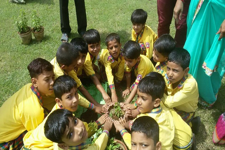Hi Ness Public School-Others plantation