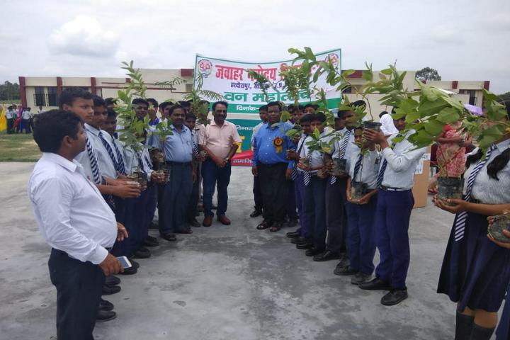 Jawahar Navodaya Vidyalaya-Greenary maintenance