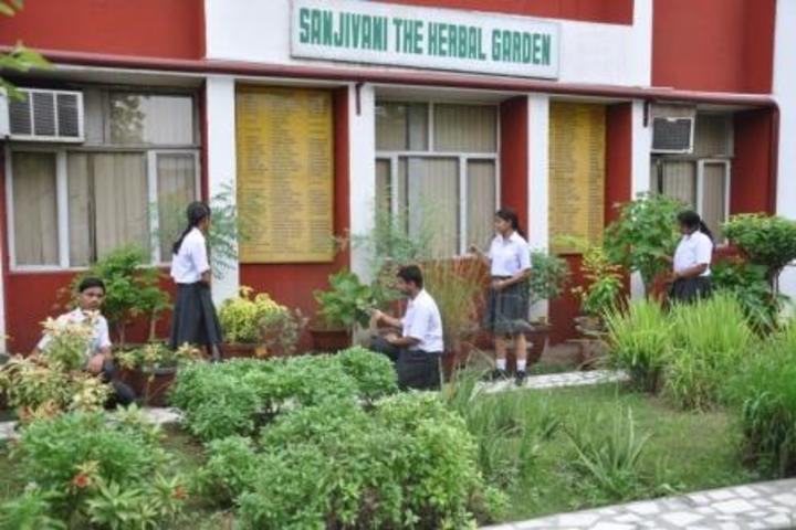 K D B Public School-Herbal Garden