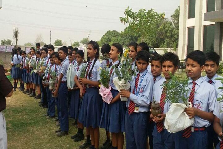 K D International School-Tree Plantation