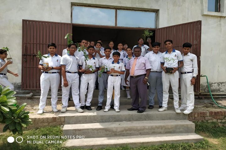 K D International School-Plantation Activity