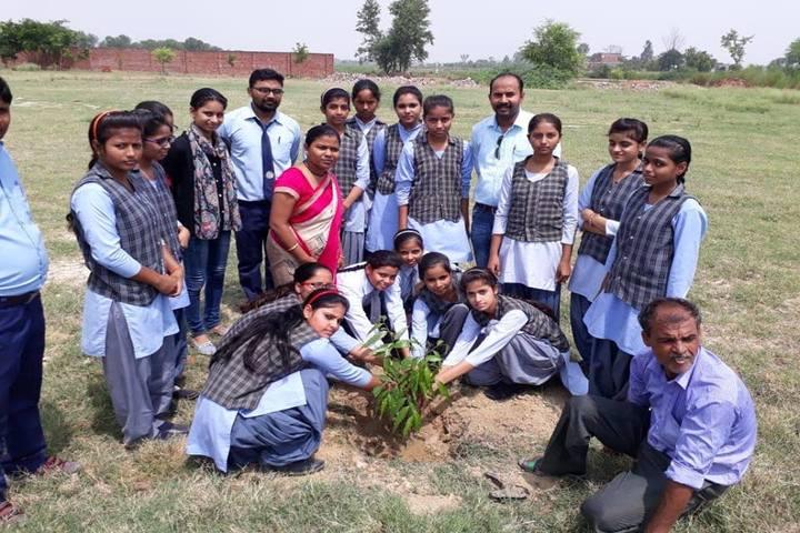 K.L.International Academy-Tree Plantation