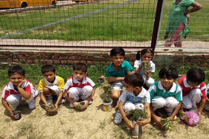 Kalka Public School-Tree Plantation Activity