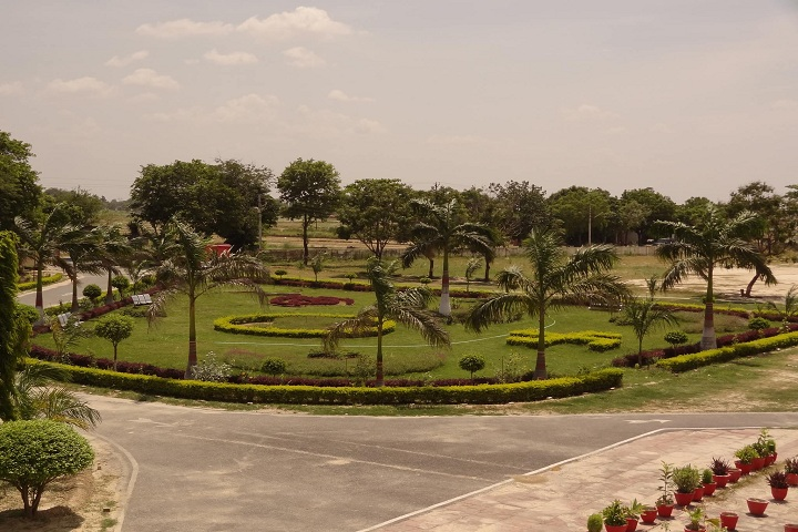 Kendriya Vidyalaya-School Ground