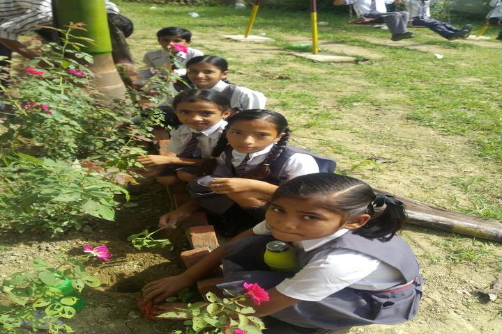Krishna Academy-Plantation