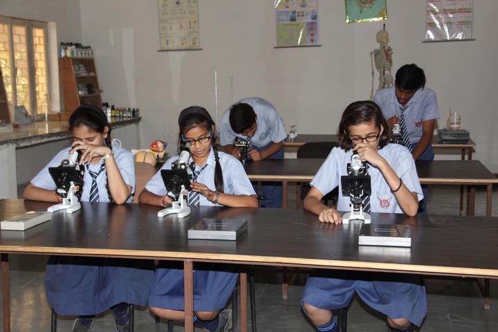 Krishna Vidya Niketan-Lab