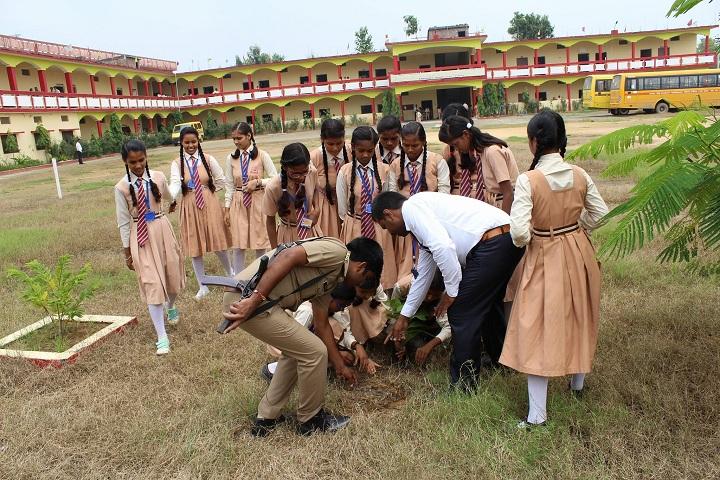 Lagna Devi Tarakant Senior Secondary School-Tree Plantation