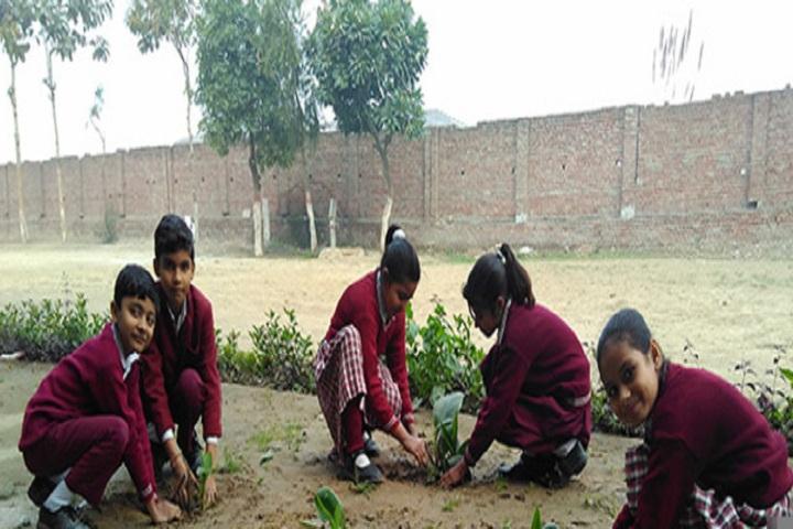 Leelawati Ramgopal Saraswati Vidya Mandir-Tree-Plantation