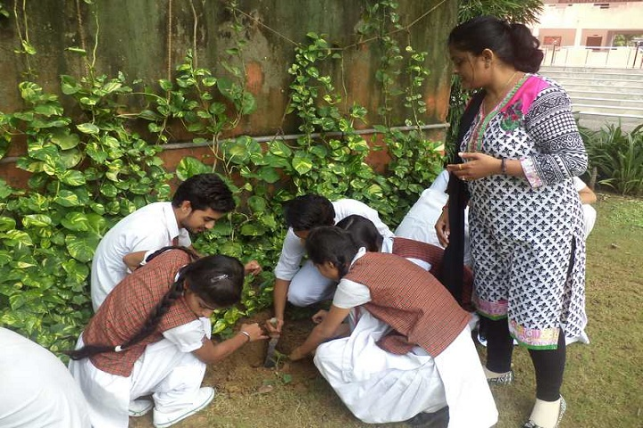 Lifeline Public School-Plantation