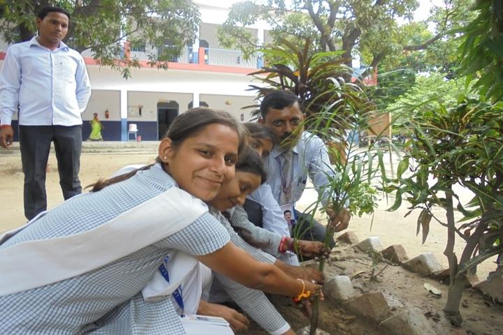 Little Flower Convent School-Tree-Plantation
