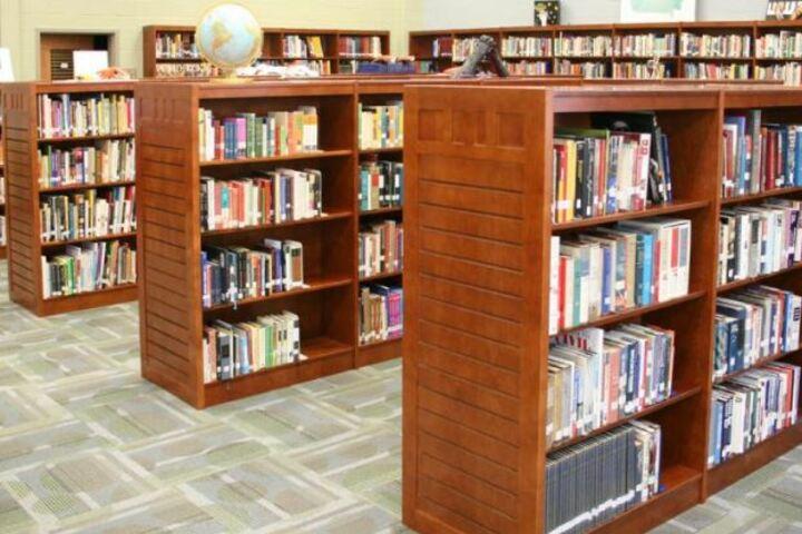 Loyal Public School-Library