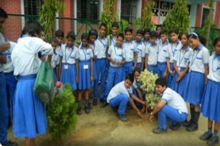 Lucknow Public College-Plantation