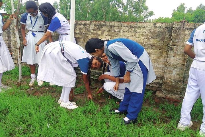 Lushkary Preparatory School-Tree Plantation