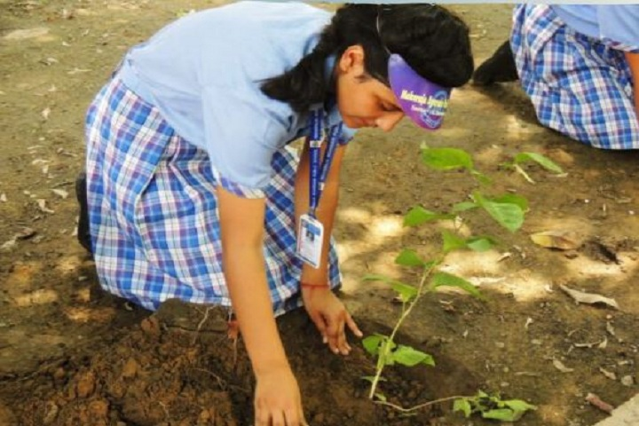 Maharaja Agarsain Public School-Tree Plantation