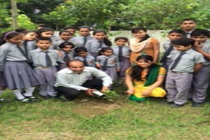 Sushila Educational Institute-Tree Plantation