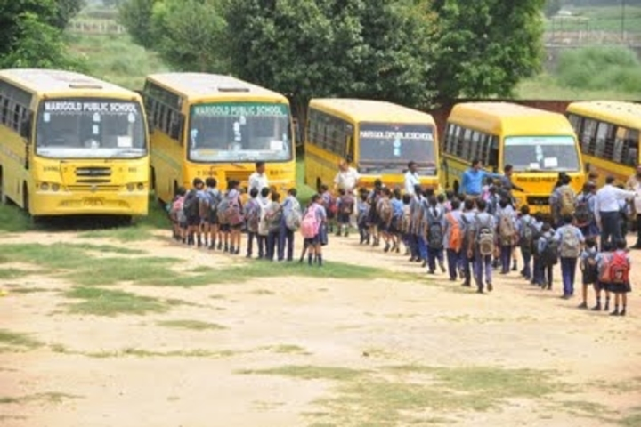 Marigold Public School-Transport