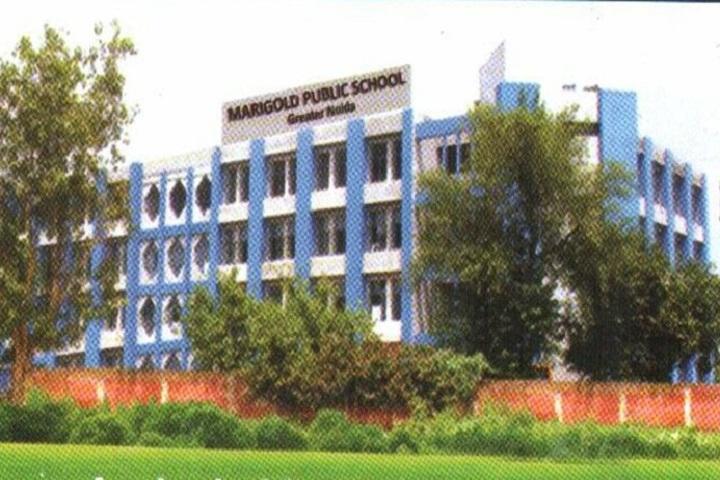 Marigold Public School-Campus view