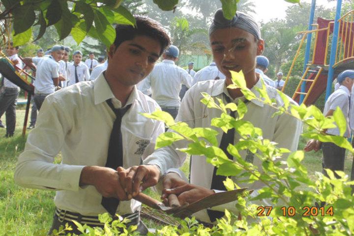Milton Educational Academy-Gardening Activity