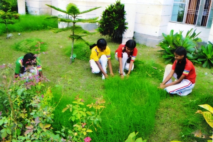 MIS International School-Gardening