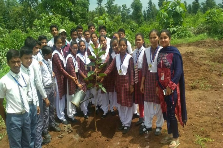 Moon Star English School-Tree Planting