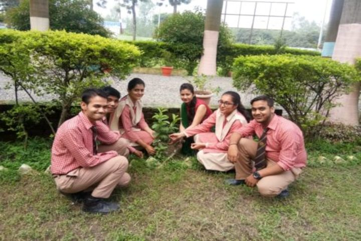 New Era English Academy-Tree Plantation