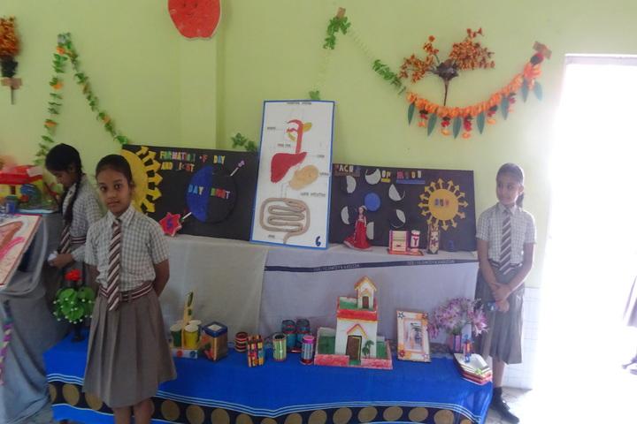 New Era School - Science Exhibition