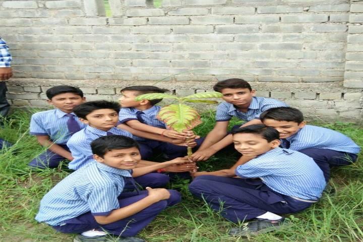 New Lucknow Public School-Tree Plantation