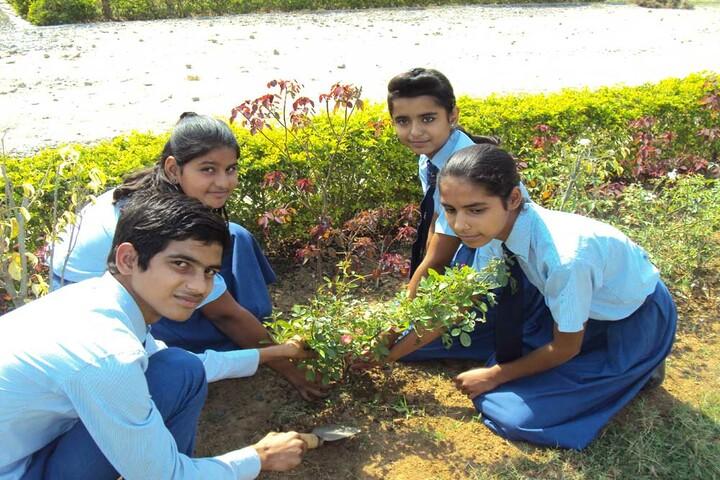 Param Public School-Tree Planting