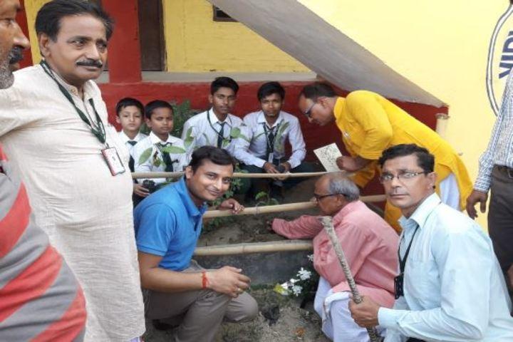 Vidyapati Public School-Tree Plant