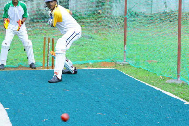 R D S Education Institute-Cricket Pitch