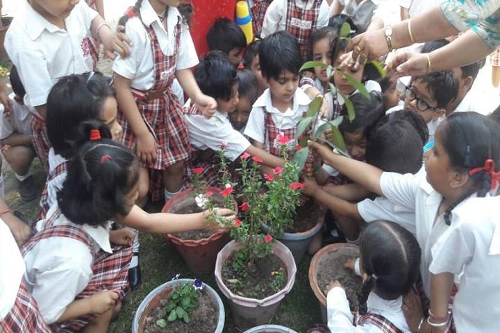 Aanchal International School-Events