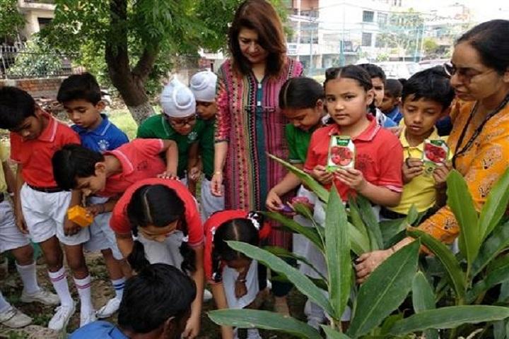 Ajit Karam Singh International Public School-Events