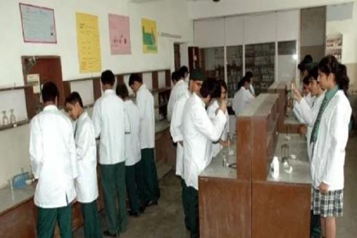 Bal Niketan Model School-Chemistry-Lab